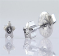 316L Stainless Steel earrings in Special shapes